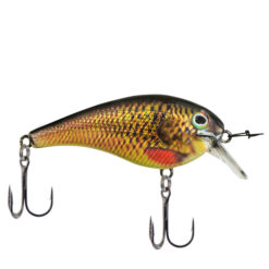 Bay Rat Lures Battle 1.5 Golden Shiner - Enlarge